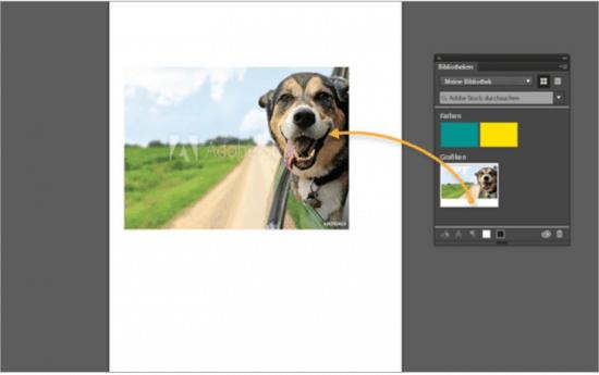 Afbeeldingen kopen bij Adobe Stock of toch liever bij Fotolia? 7