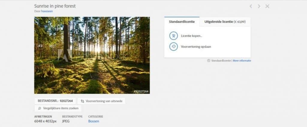 Afbeeldingen kopen bij Adobe Stock of Fotolia? 4