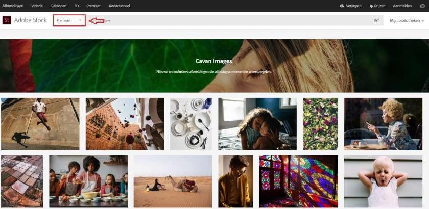 Adobe Stock premium afbeeldingen