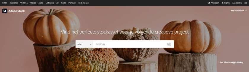 www.shutterstock.com/nl homepage