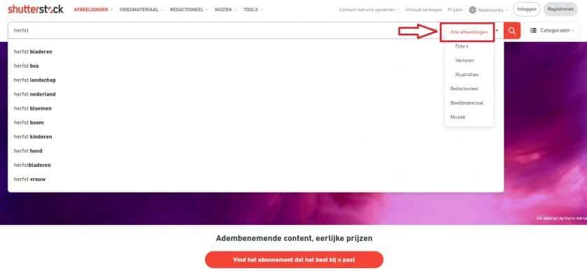 Shutterstock afbeeldingen zoeken