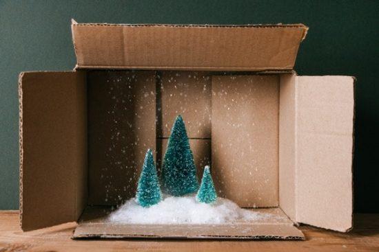 Photocase Trends 2019 kijkdoos winter met sneeuw en dennebomen