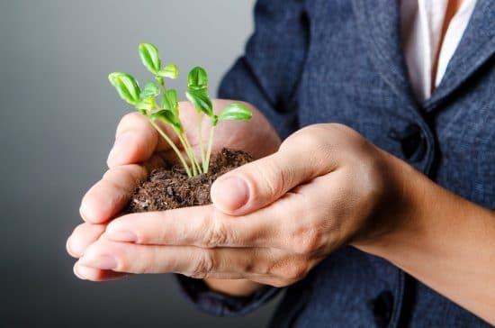 Vrouw met een plantenstekje in haar handen