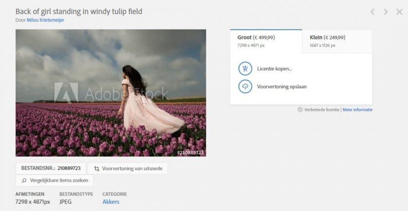 Adobe Stock Premium afbeelding voorbeeld