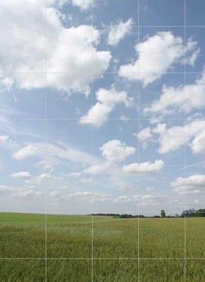 StockPhotoSecrets Shop visueel zoeken weergave zoekresultaat