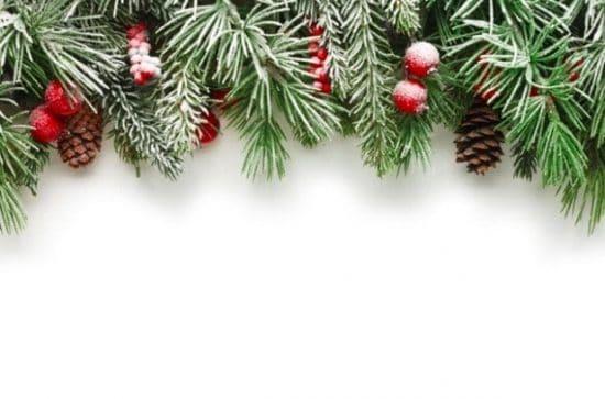 Kerstdecoratie van dennen tegen een witte achtergrond