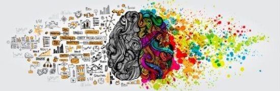 Menselijk brein met creatieve en rationele hersenhelft