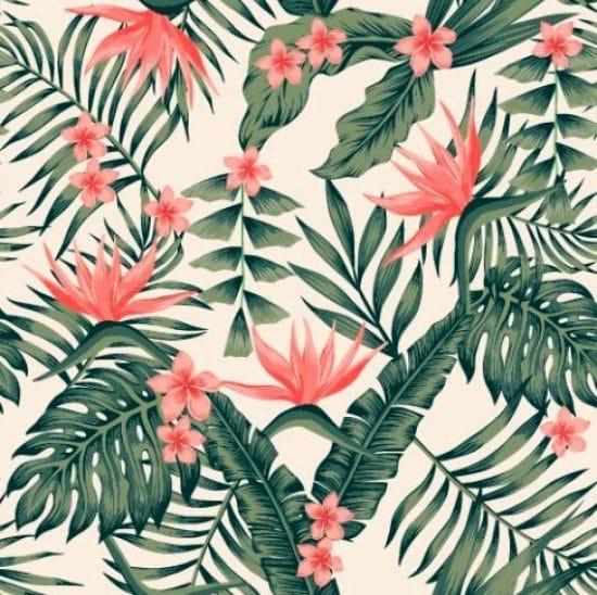 Patronen van tropische plantengroei