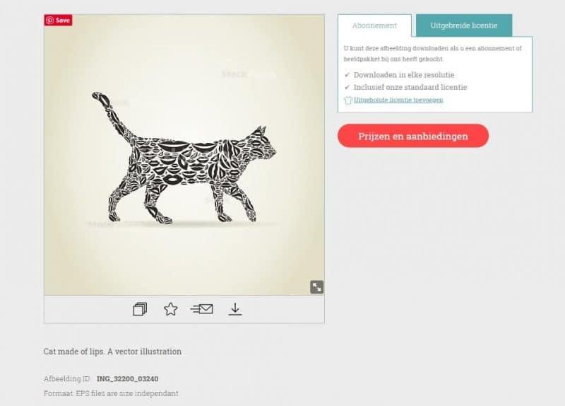 Vector van een kat