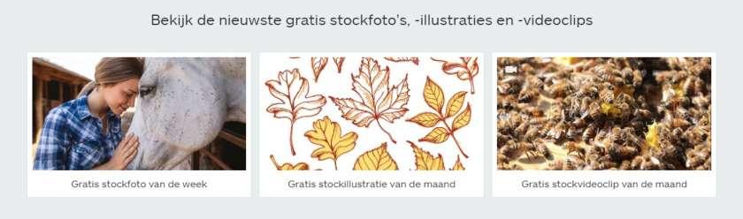 iStock gratis afbeeldingen