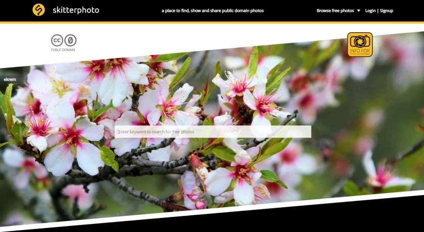 Skitterphoto screenshot website