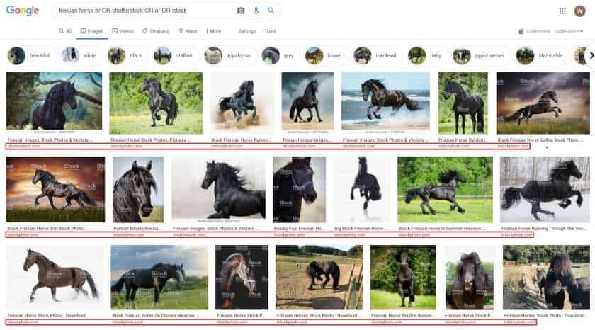 Google afbeeldingen toegevoegde termen