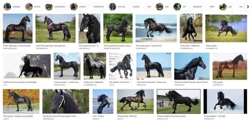 Google Afbeeldingen zoekfunctie resultaten