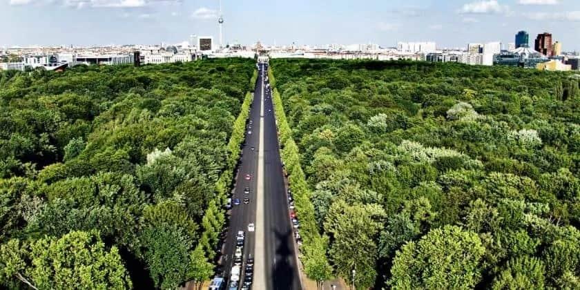 Autoweg door de bossen met op de achtergrond een stad