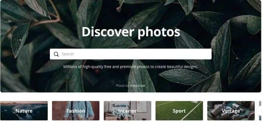 Canva screenshot website