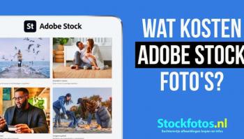 Wat kosten Adobe Stock foto's? – Lees hier het antwoord.